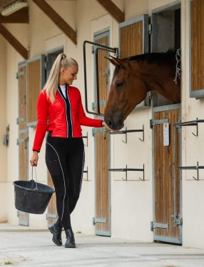 Woman with bucket petting horse in a stall.